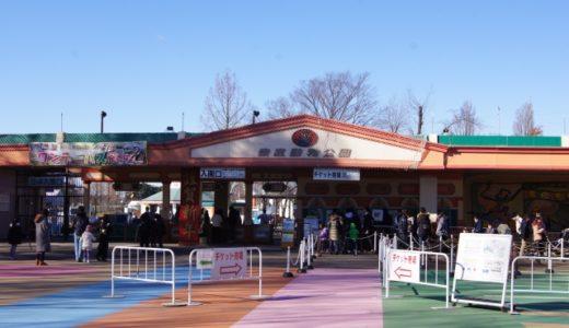 東武動物公園スーパープール前売りでお得に遊べる!口コミも